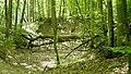 Wald-w050-h050-cut.jpg