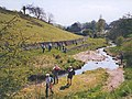 Walkers alongside Hebden Beck - geograph.org.uk - 1154643.jpg