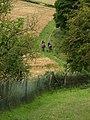 Walkers near Weedley Springs - geograph.org.uk - 926571.jpg