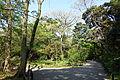 Walkway - Institute for Nature Study, Tokyo - DSC02078.JPG