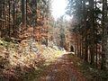 Wanderung im November - panoramio (51).jpg