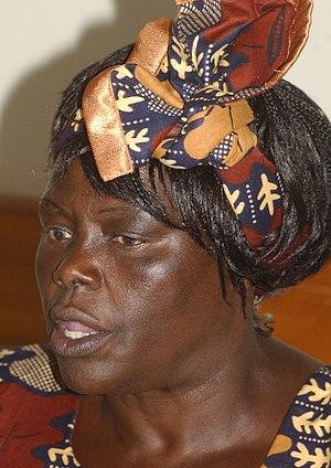 Wangari Muta Maathai cover