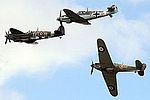 Warbirds (5102852854).jpg