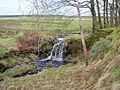 Waterfall - geograph.org.uk - 90693.jpg