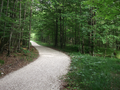 Weg-weißenbachtalradweg.png