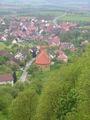 Weingarts-Nahaufnahme-16-05-2005.jpeg