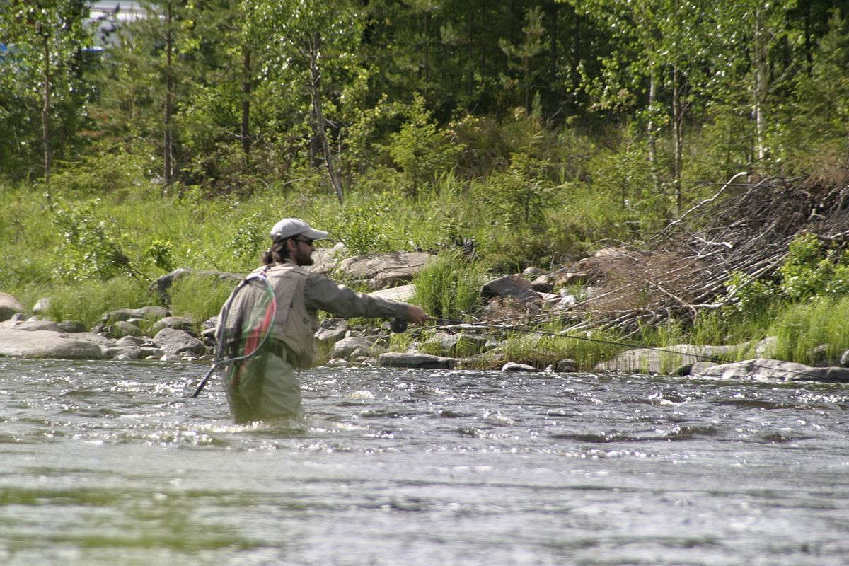 World fly fishing championships wikipedia for What is fly fishing