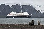 Whalers Bay Deception Island Antarctica Fur Seal Silversea Silver Cloud 3 (47337235161).jpg