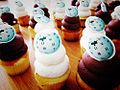 Wiki cupcakes!.jpg