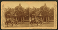 William Jennings Bryan on his favorite horse at his house, Lincoln, Nebraska, from Robert N. Dennis collection of stereoscopic views.png