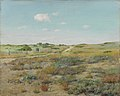 William Merritt Chase - Shinnecock Hills.jpg