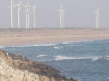 Windmills of gujarat.jpg