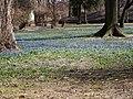Wiosna w parku - panoramio.jpg