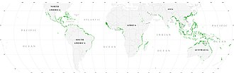 Description de l'image  World_map_mangrove_distribution.jpg.