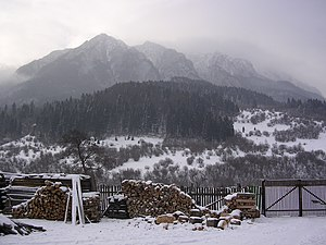 Piatra Craiului Mountains - View towards the ridge