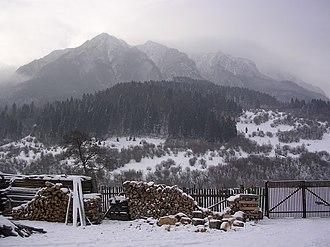 Piatra Craiului Mountains - View towards the ridge
