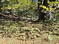 Zelatamuno 2 Mendebalde trikuharria.jpg
