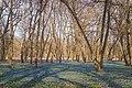 Znamensky Park - 003.jpg