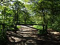 'Country Walk', Norton Rd Runcorn - panoramio.jpg