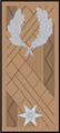 (14) Dandártábornok(2).png