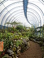 (Jardín Botánico de Quito) pic a09.JPG