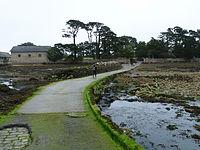 Île de Berder-Gois-Marée basse (2).jpg