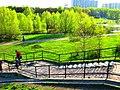 Апрель в Кузьминках, Москва, Россия. - panoramio - Oleg Yu.Novikov (4).jpg