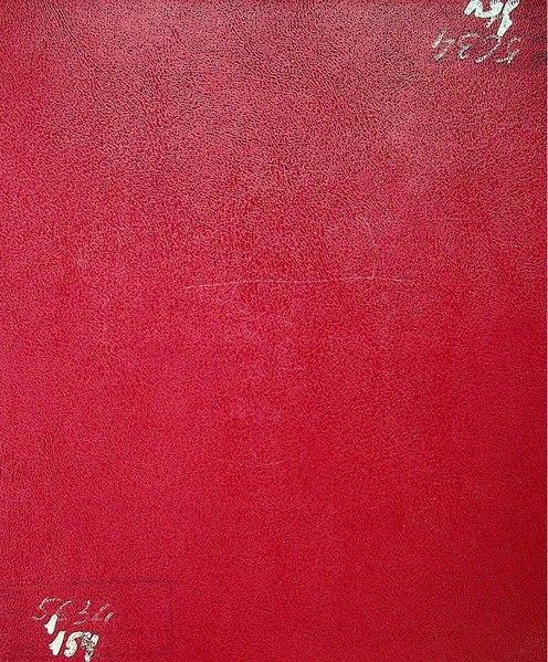 File:ДАКО Р-5634-1-154. 1924-1925. Бородянка - Клавдієве. Шлюб.pdf
