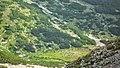 Долината на р.Десилица - panoramio.jpg
