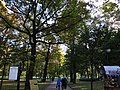 Михайловский сад 2 .JPG