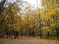 Осень - panoramio (16).jpg
