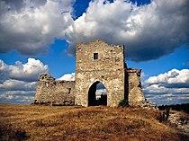 Руїни Кременецького замку 1.jpg