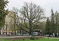 Сад Шевченка. Харків.jpg