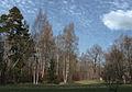 Сергиевка 2007 04 08.jpg