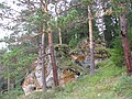 Скала около Чусовой (Rosk near Chusovaya river) - panoramio (2).jpg