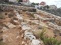 אתר ארכיאולוגי בישוב עלי.jpg