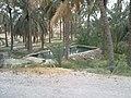 حوض آب چشمه مراد - panoramio.jpg