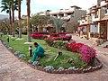 شاليهات فندق هيلتون طابا بجنوب سيناء.JPG