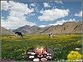 نوروز 1390 مبارک، توضیح در مورد عکس کامنت اول Happy Nowruz (Iranian new year, 1st comment) - panoramio.jpg