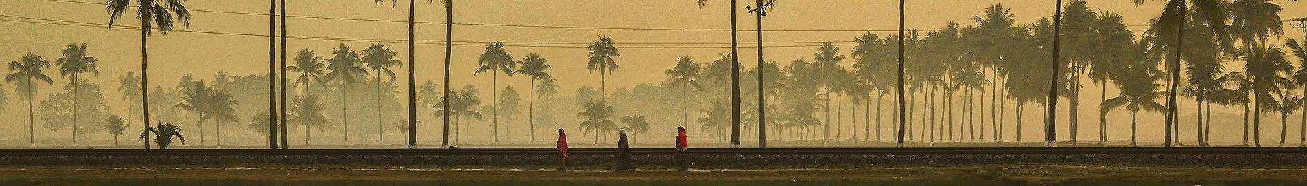 নিঝুম দ্বীপ জাতীয় উদ্যান (ব্যানার).jpg