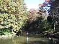 むじなが池 - panoramio.jpg