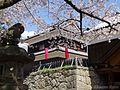 上田城 (Ueda Castle in spring) 15 Apr, 2013 - panoramio.jpg