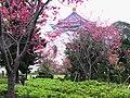 中正紀念堂 CKS Memorial Hall - panoramio.jpg