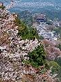吉野山上千本から蔵王堂を見る 2014.4.15 - panoramio.jpg
