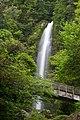 大樽の滝 - panoramio.jpg