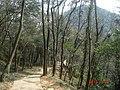 杭州. 登将台山(-月岩) - panoramio.jpg