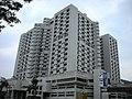 榮民總醫院 - panoramio.jpg