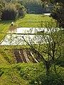 田園 - panoramio.jpg