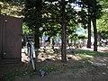 自転車で札幌大通公園まで行く途中 - panoramio.jpg