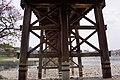 錦帶橋 Kintai Bridge - panoramio (4).jpg
